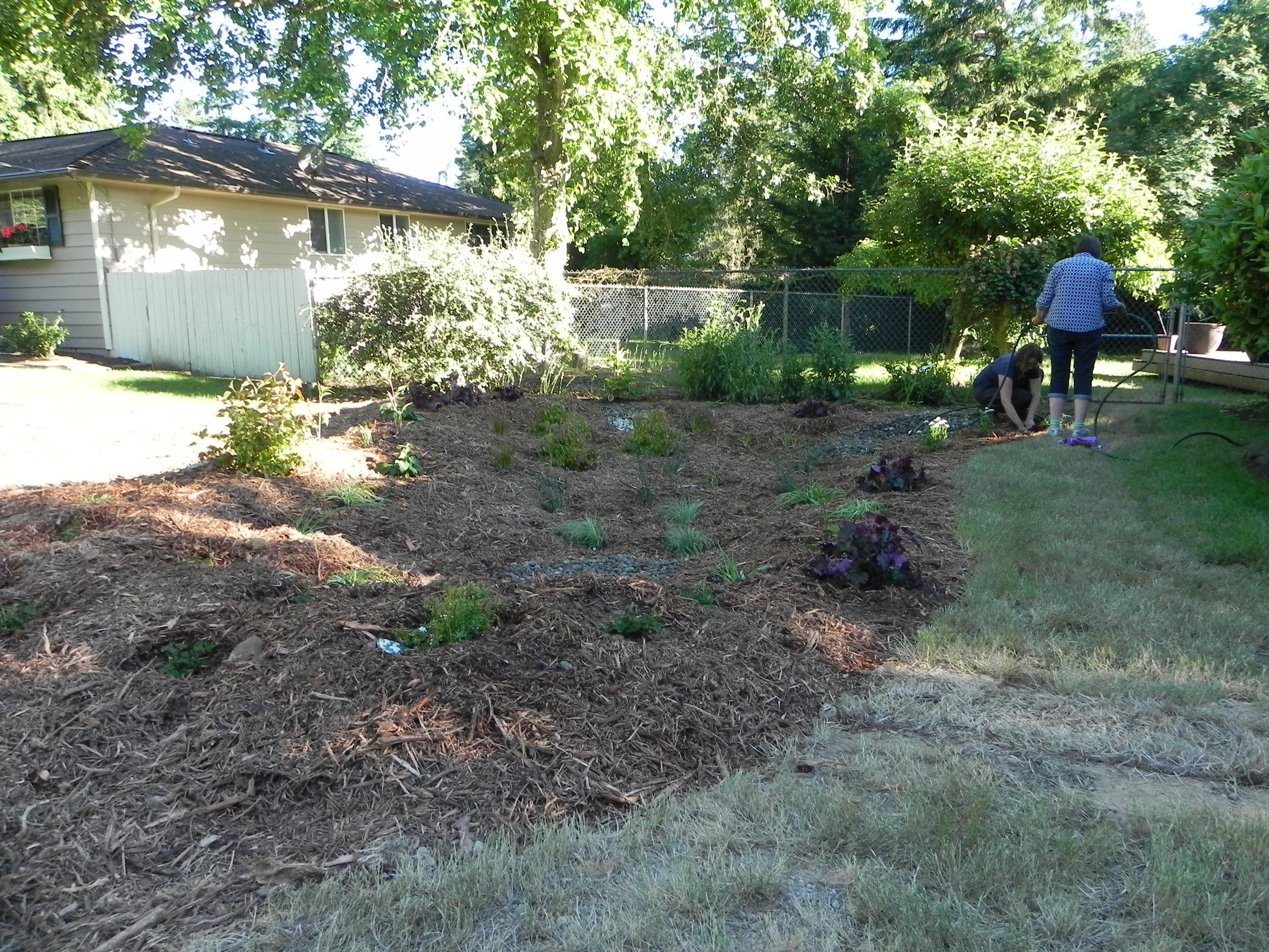 Lynnwood-WCC-Planting-0517-AFTER.jpg
