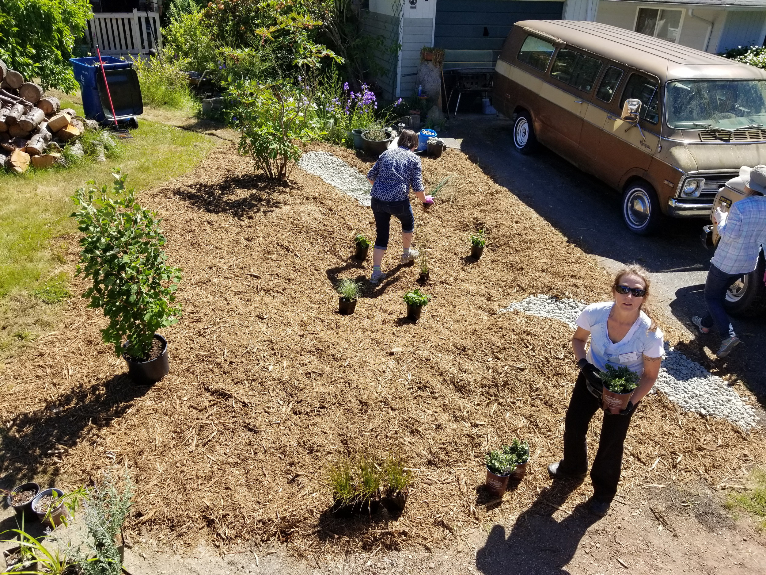 Lynnwood-WCC-Planting-151235.jpg