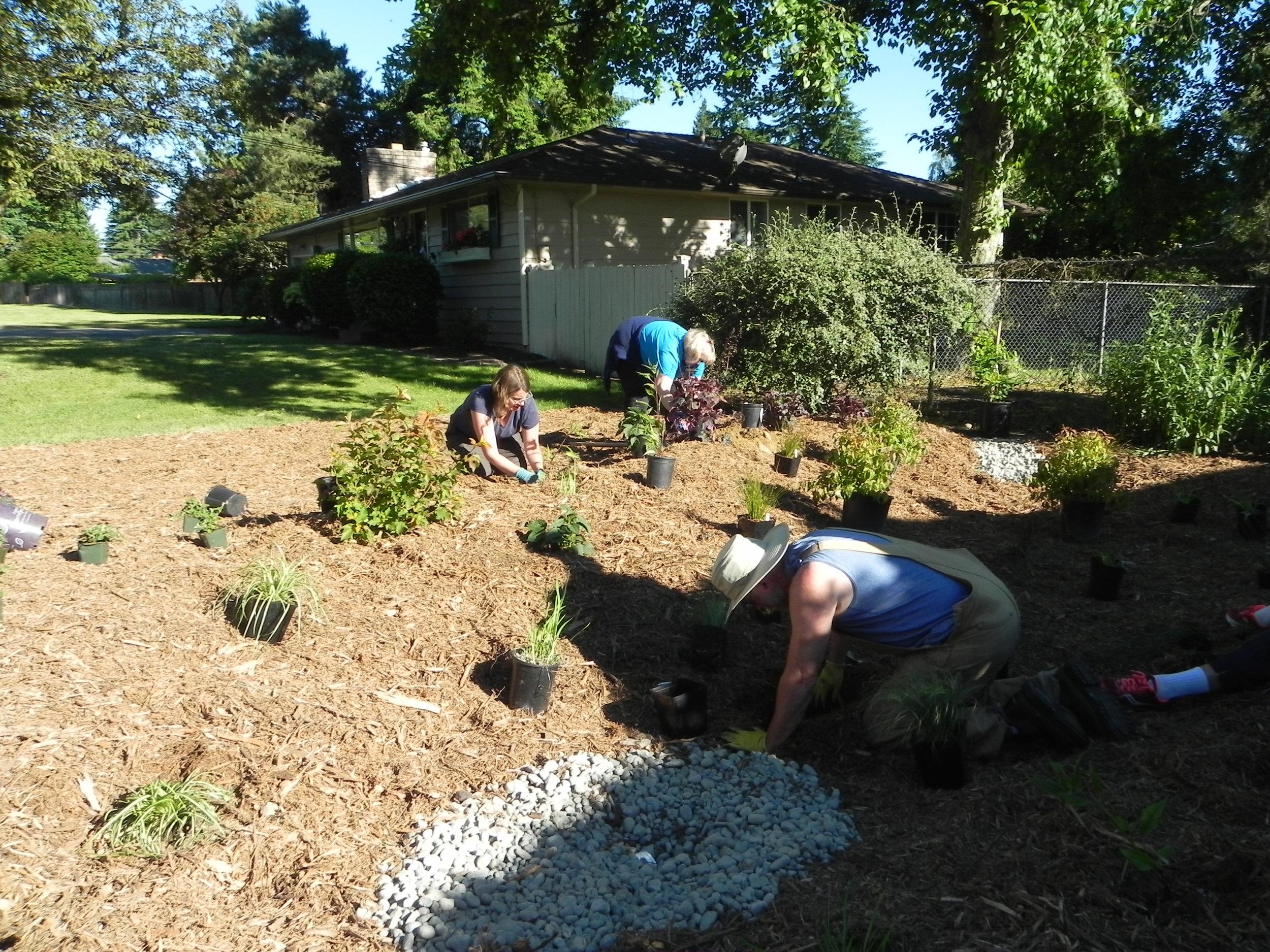 Lynnwood-WCC-Planting-0491.jpg