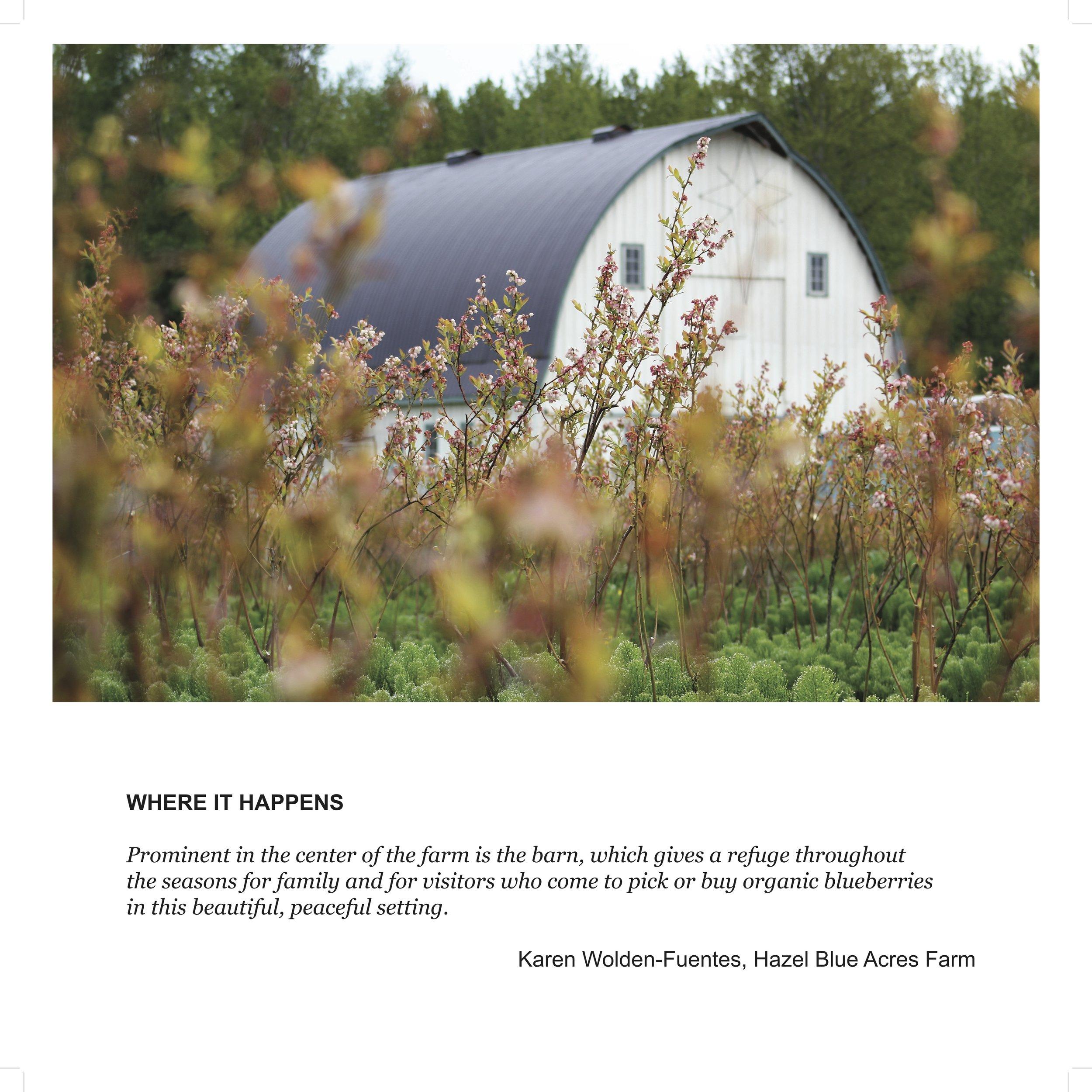 Karen farm bl.jpg