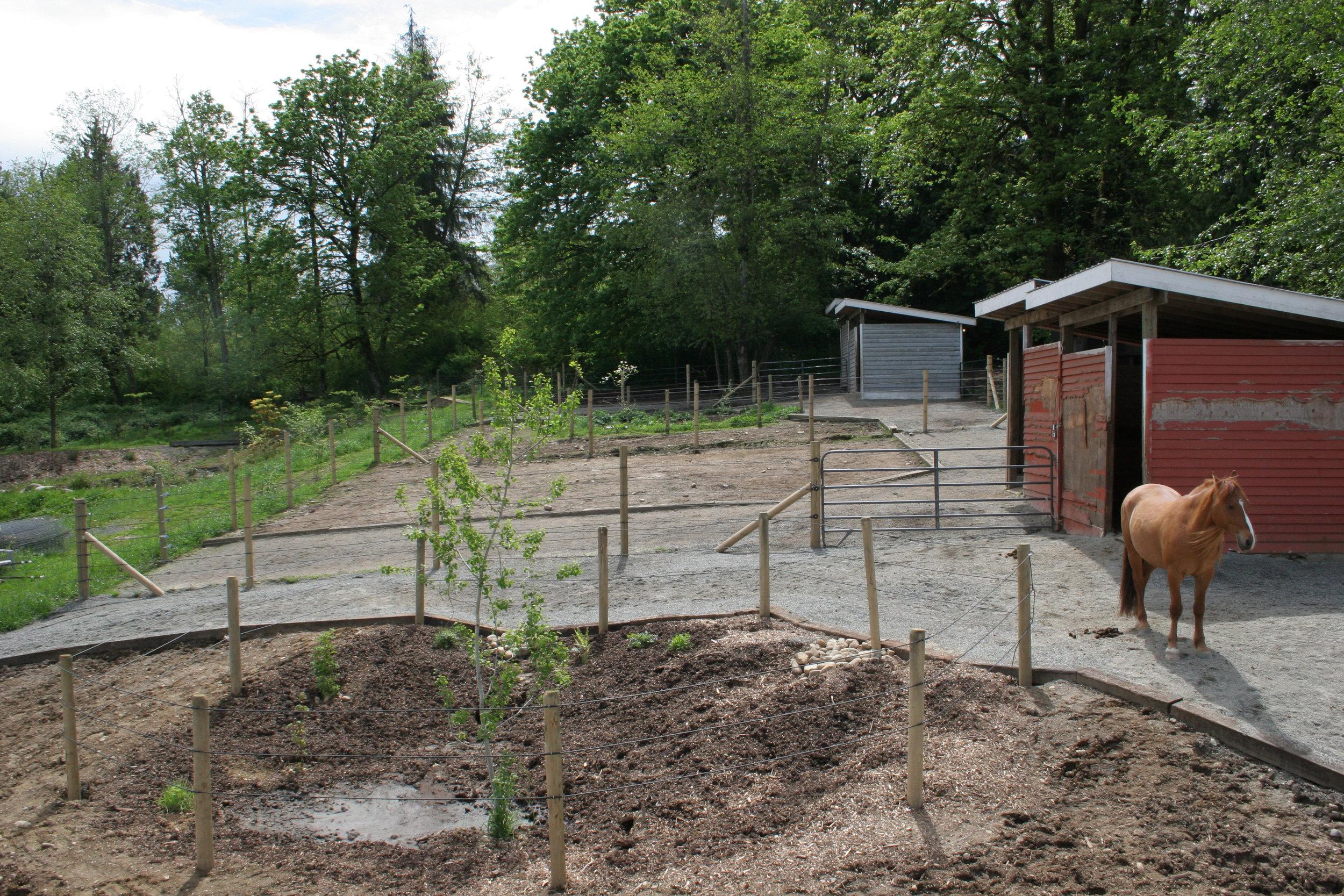 A newly-created rain garden waiting for plants.