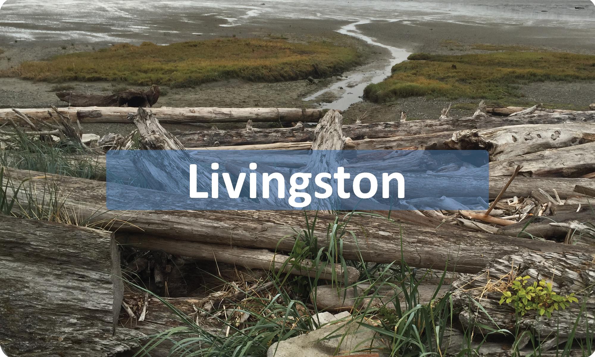 Livingston-Button.jpg