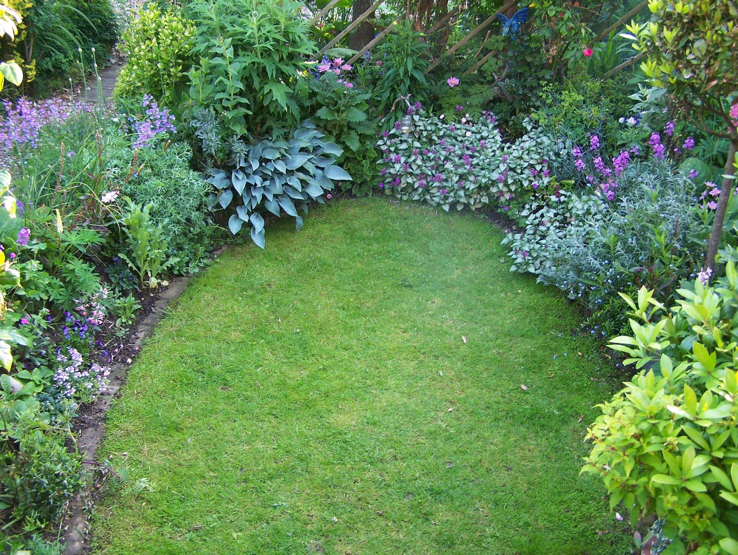 layered planting or reducing lawn.jpg