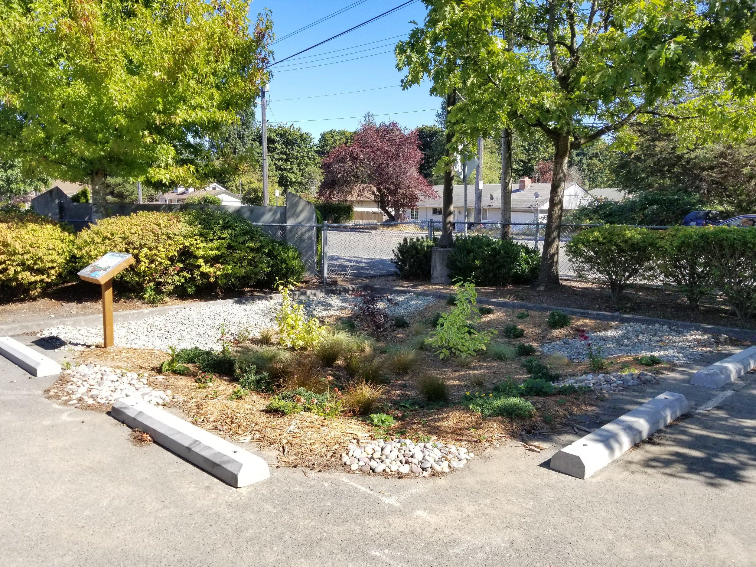 Rain Garden at Cascade High School