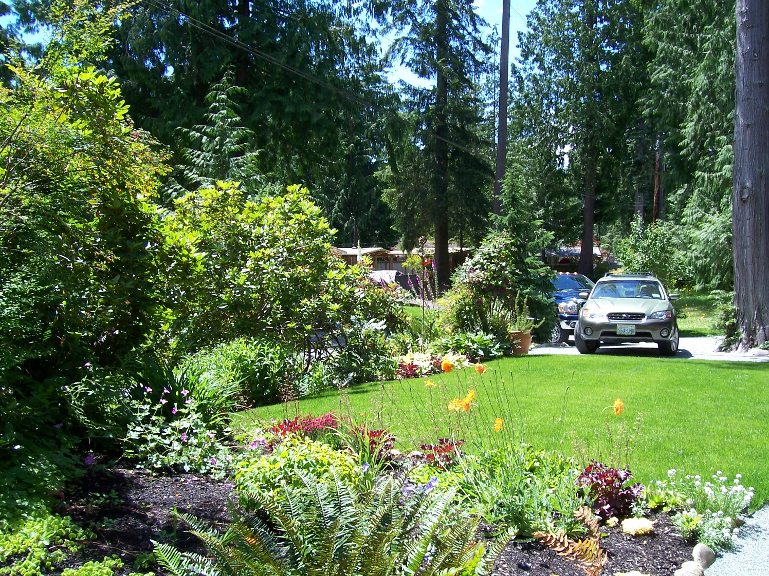 A colorful buffer borders this yard. Courtesy of Innovative Landscape Technology.