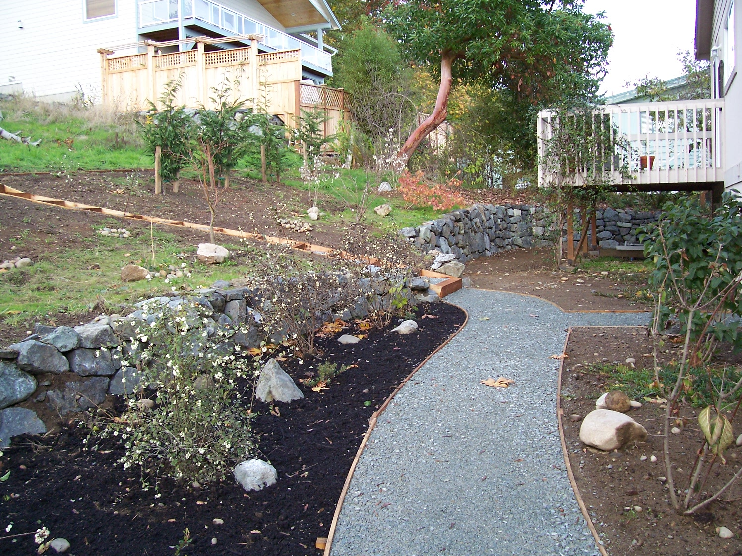 Amended soil(left) and non-amended soil(right) along a walkway. Courtesy of Innovative Landscape Technology.