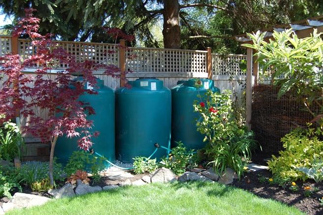 Jennifer Carlson's cisterns.jpg