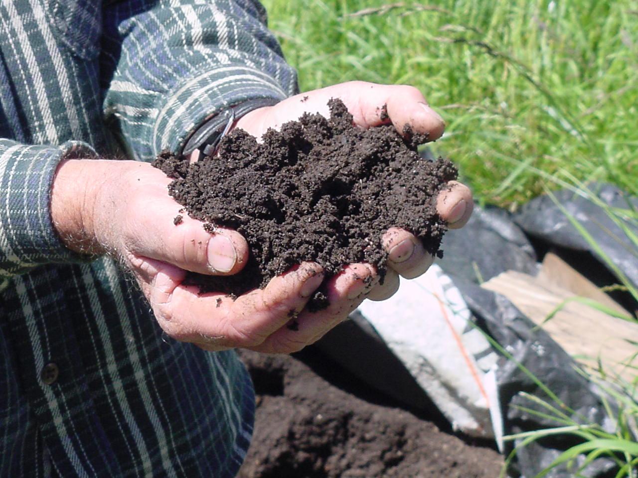 Compost2.jpg