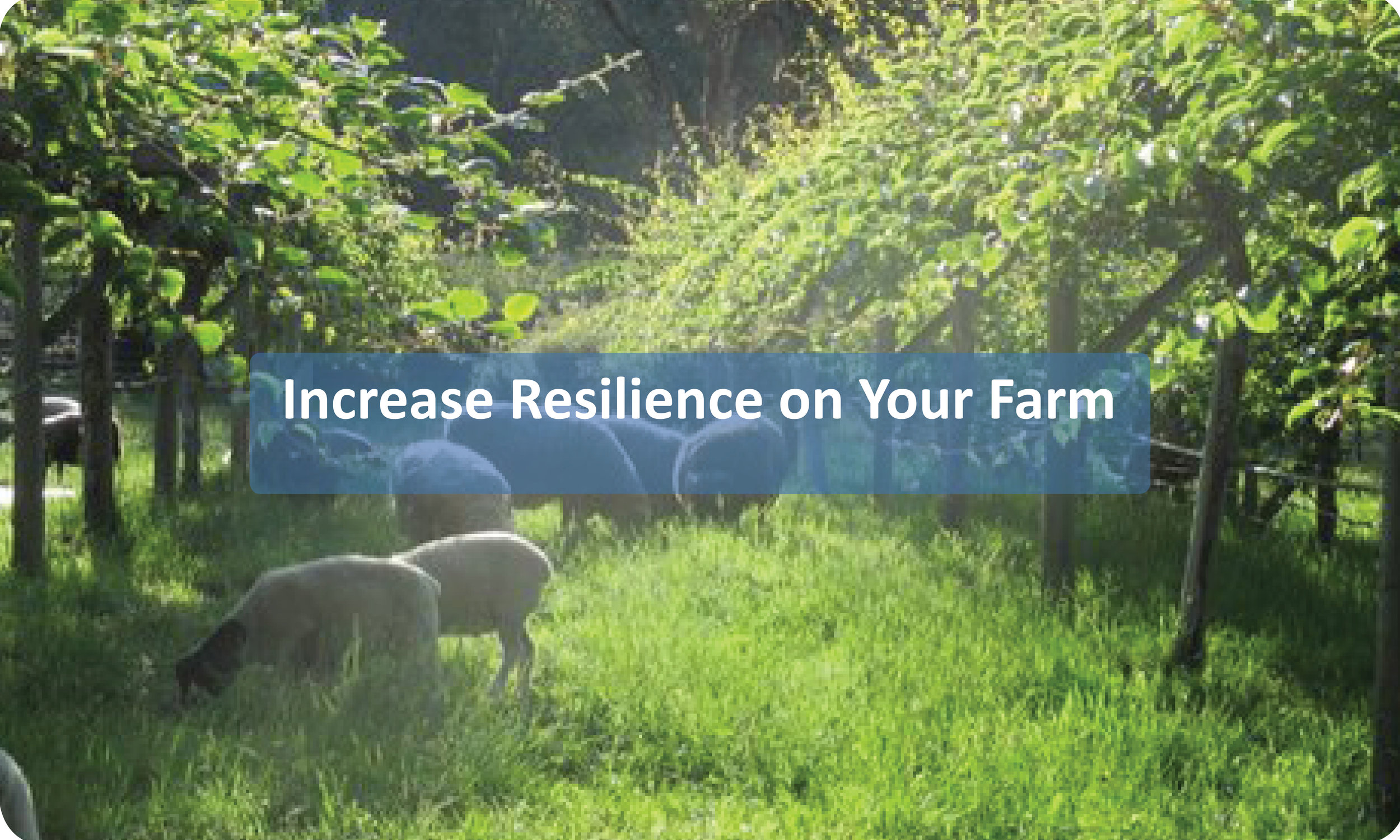 Increase Resilience on Your Farm
