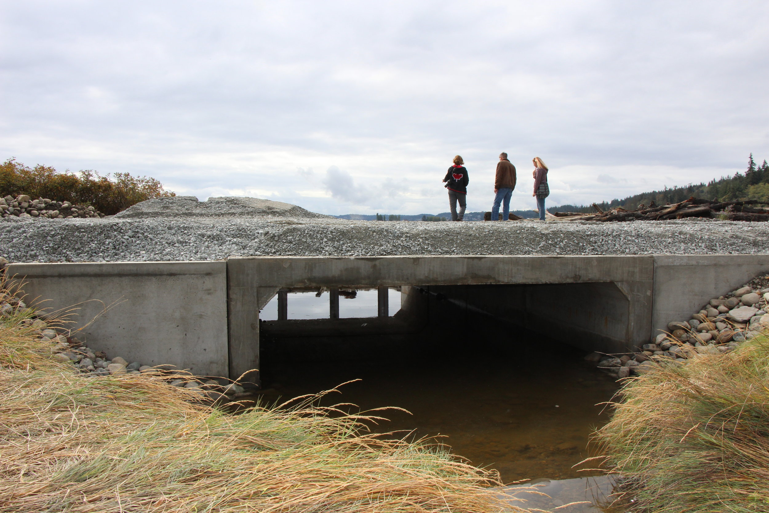Dawn Pucci, Commissioner Rick Hannold, and Amber (Coupeville office) from Island County standing on the newly placed Barnum Road culvert.