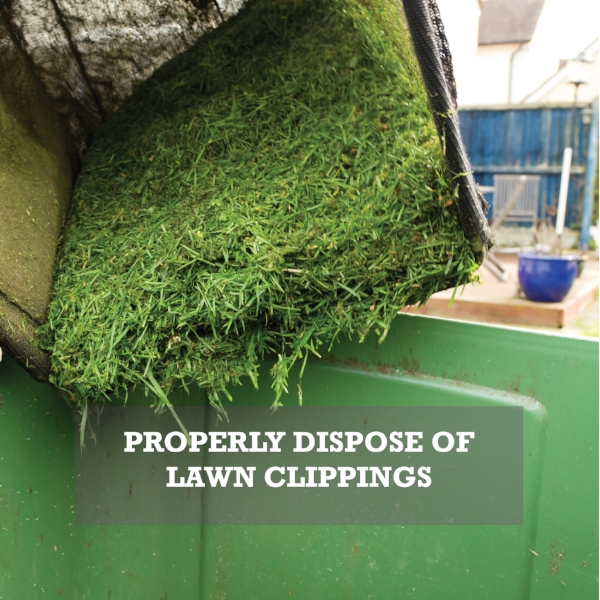 Properly Dispose of Lawn Clippings