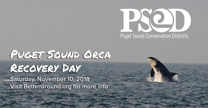 PugetSoundOrcaRecoveryDay-11-10-18.png