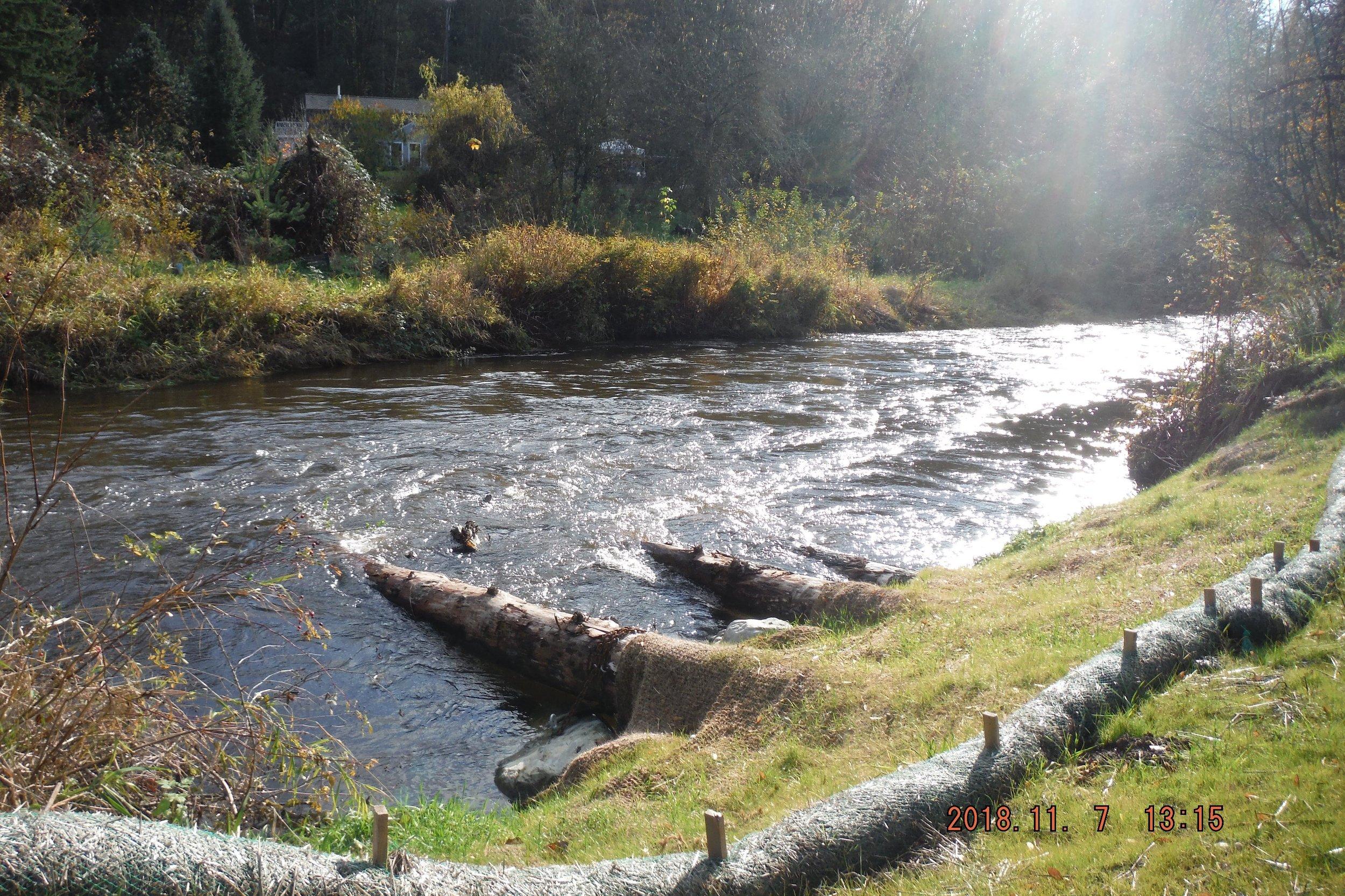 Beautiful Woods Creek