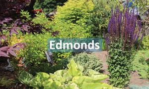 Edmonds.jpg