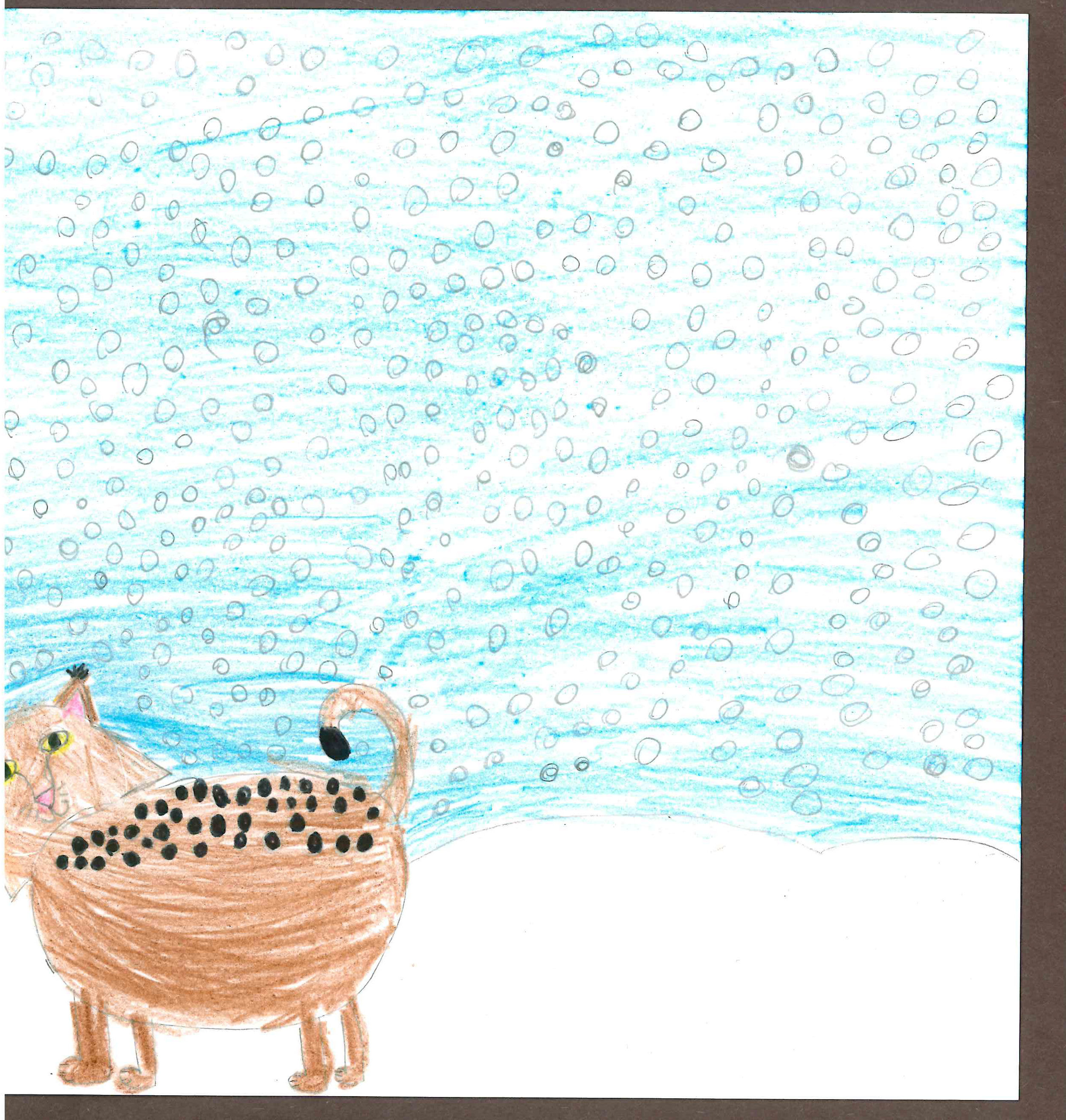 Snowy Lynx by Avery Colinas - 3rd place - Grades 3-5