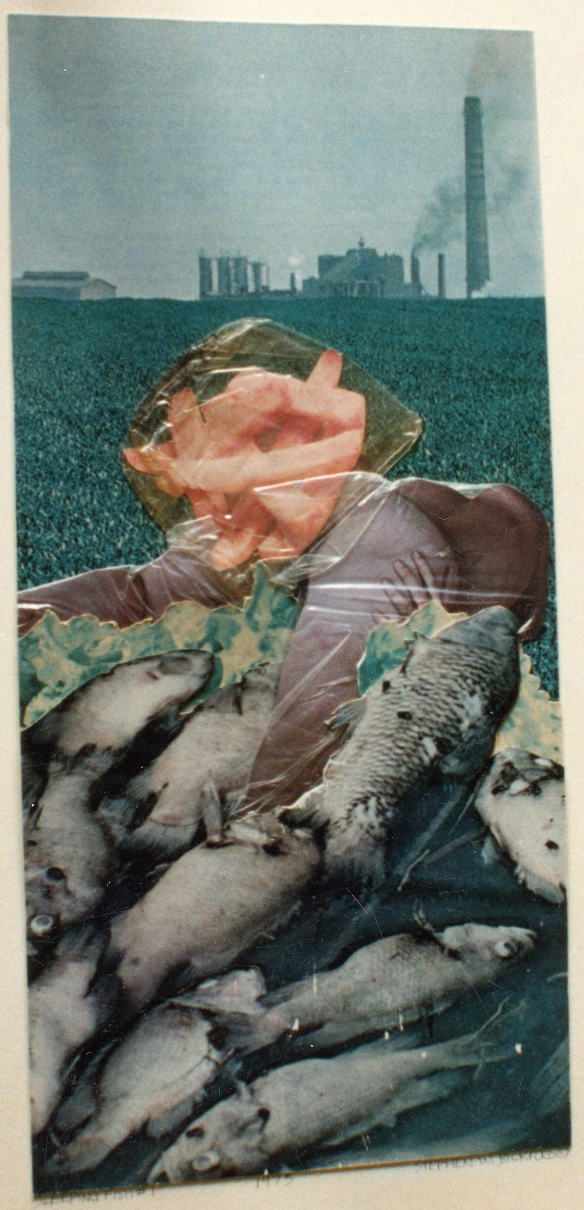 Collage ca1975