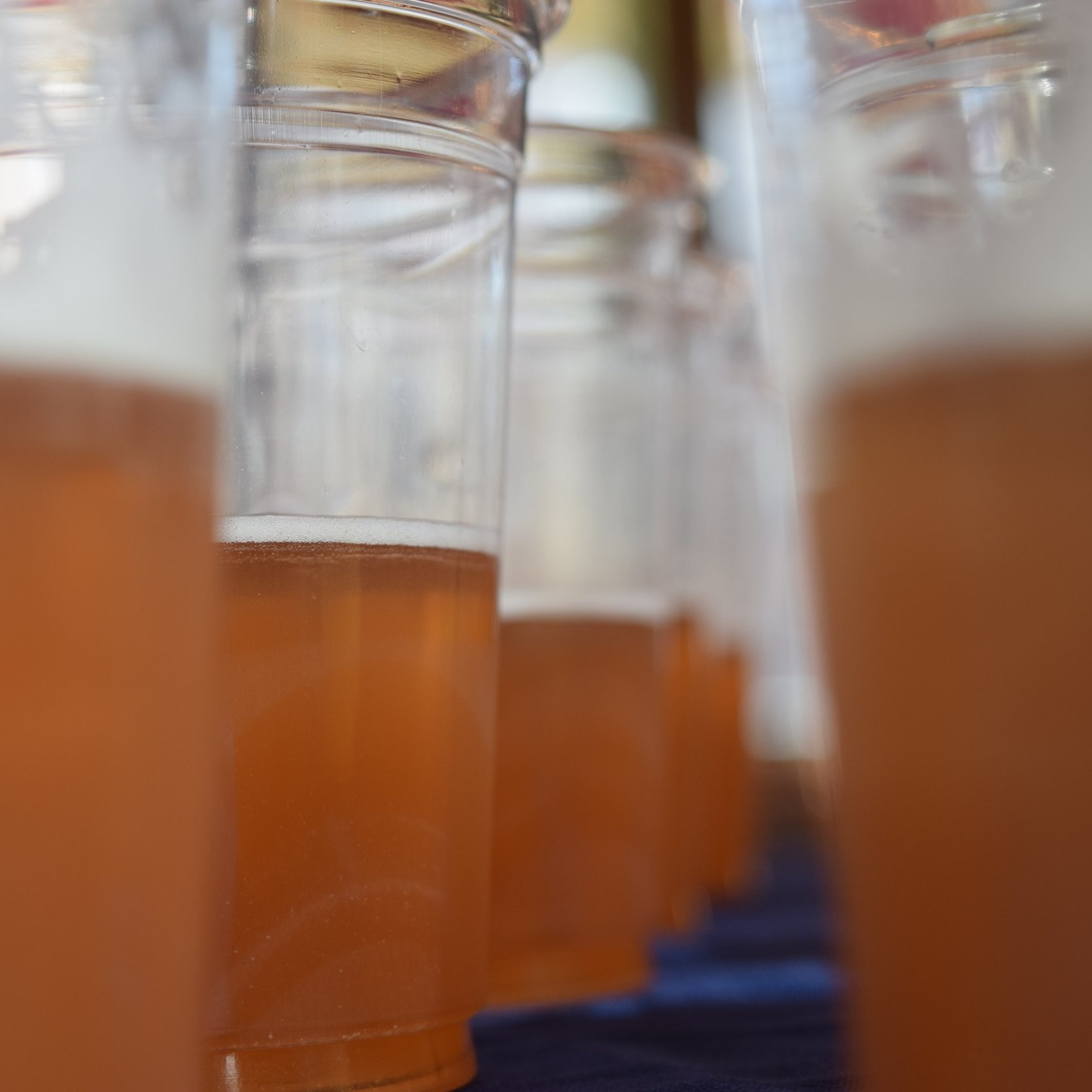 BRewmaster Tours -