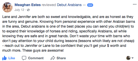 arabian show barn