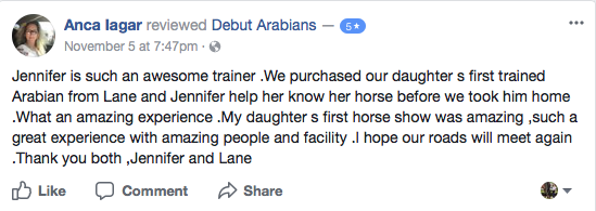 Arabian stable dallas