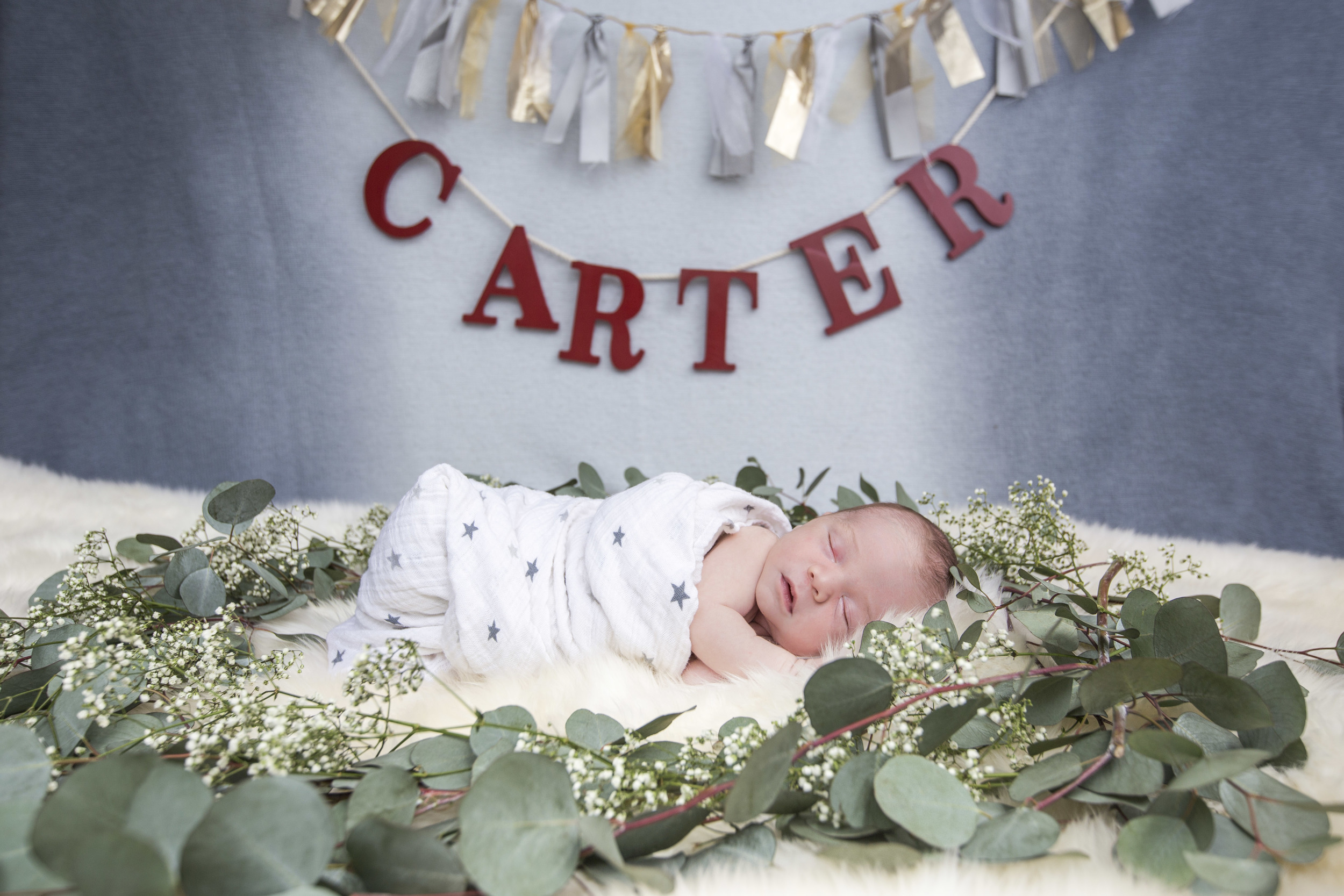 Carter-46.jpg