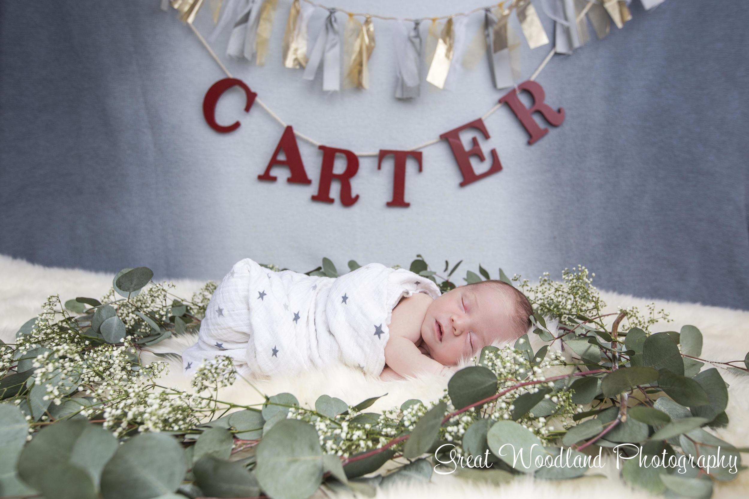 Carter-16.jpg