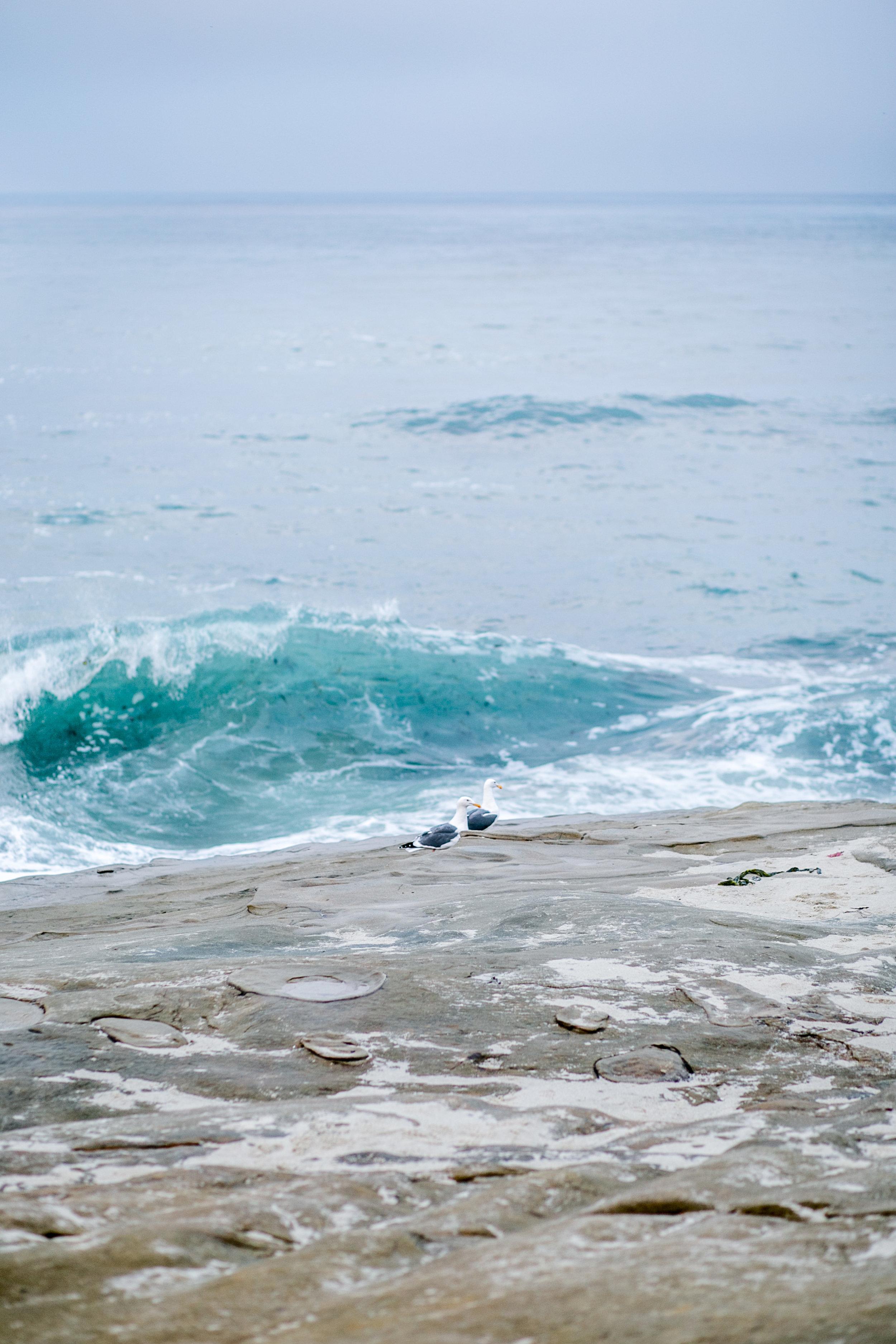 Moody Mermaid Style Shoot-1.jpg