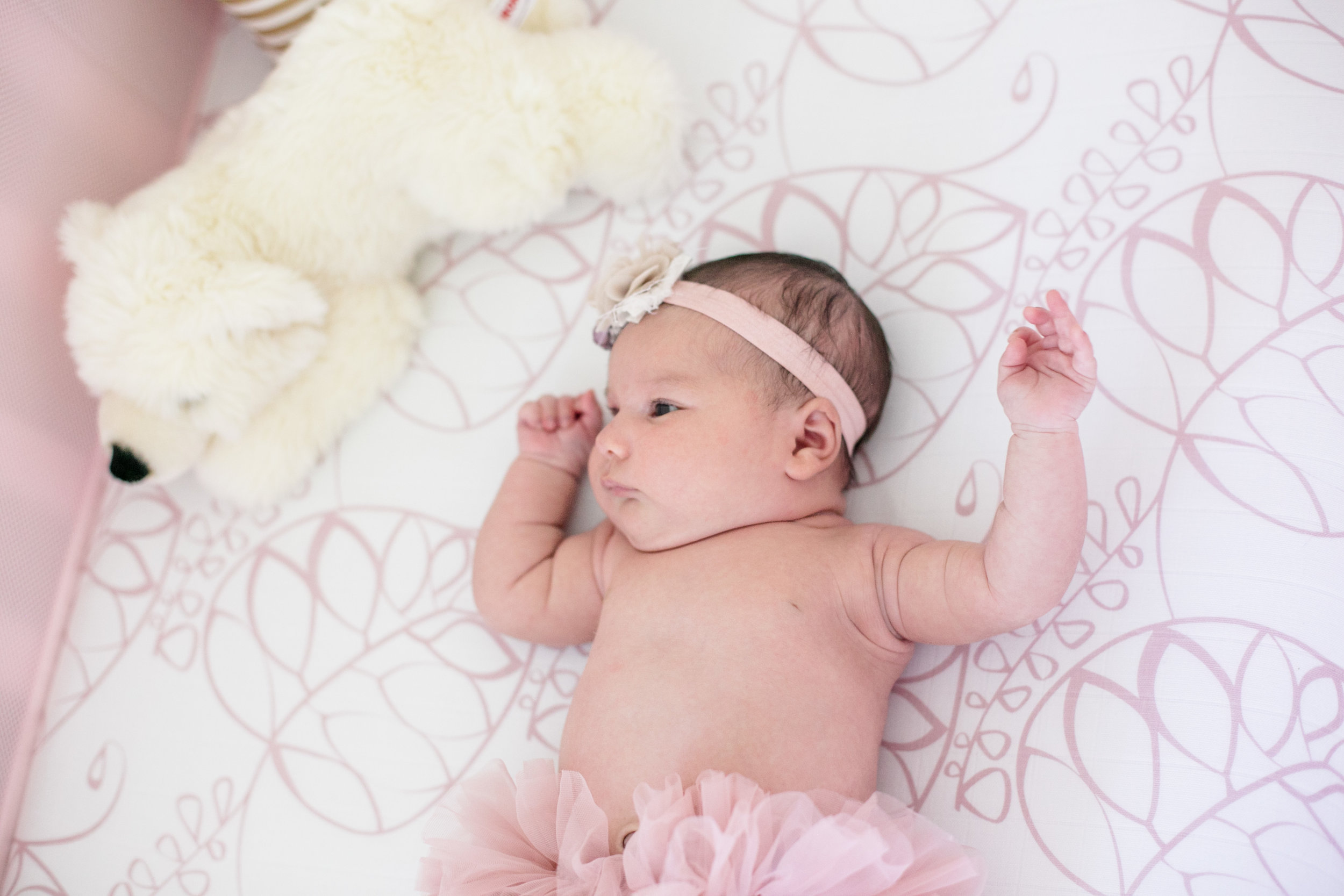 Dougher Newborn Session 2017-4.jpg