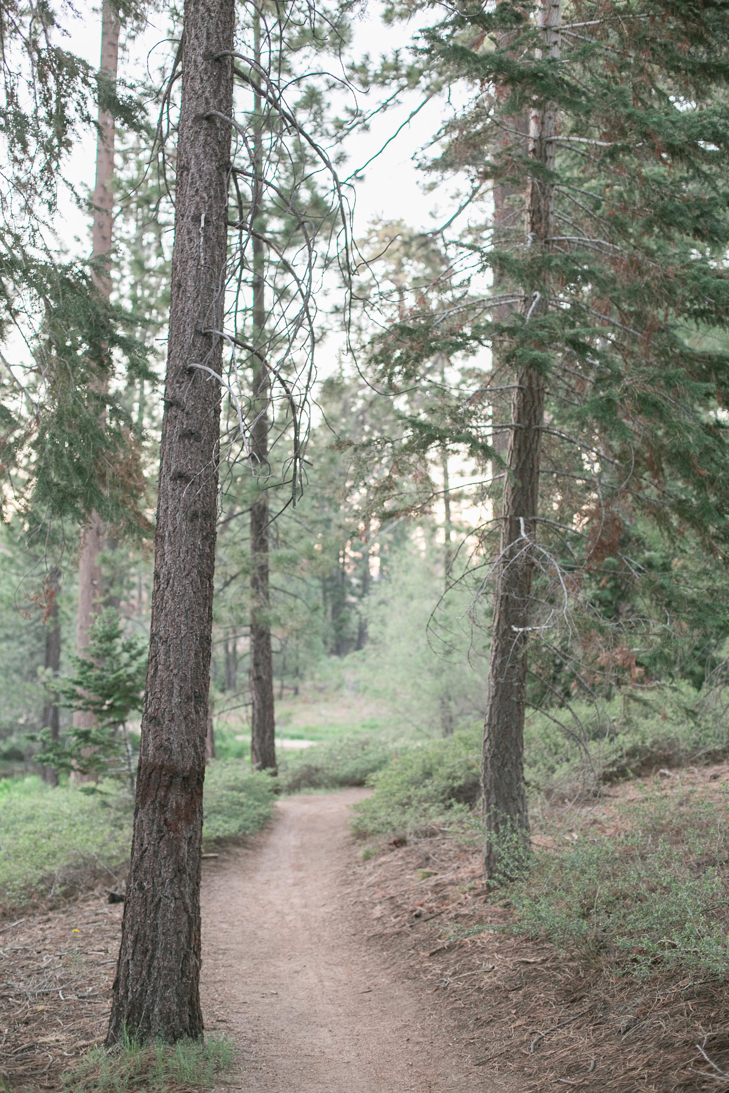 Big Bear_Lake_Camping_Trip_2017-38.jpg
