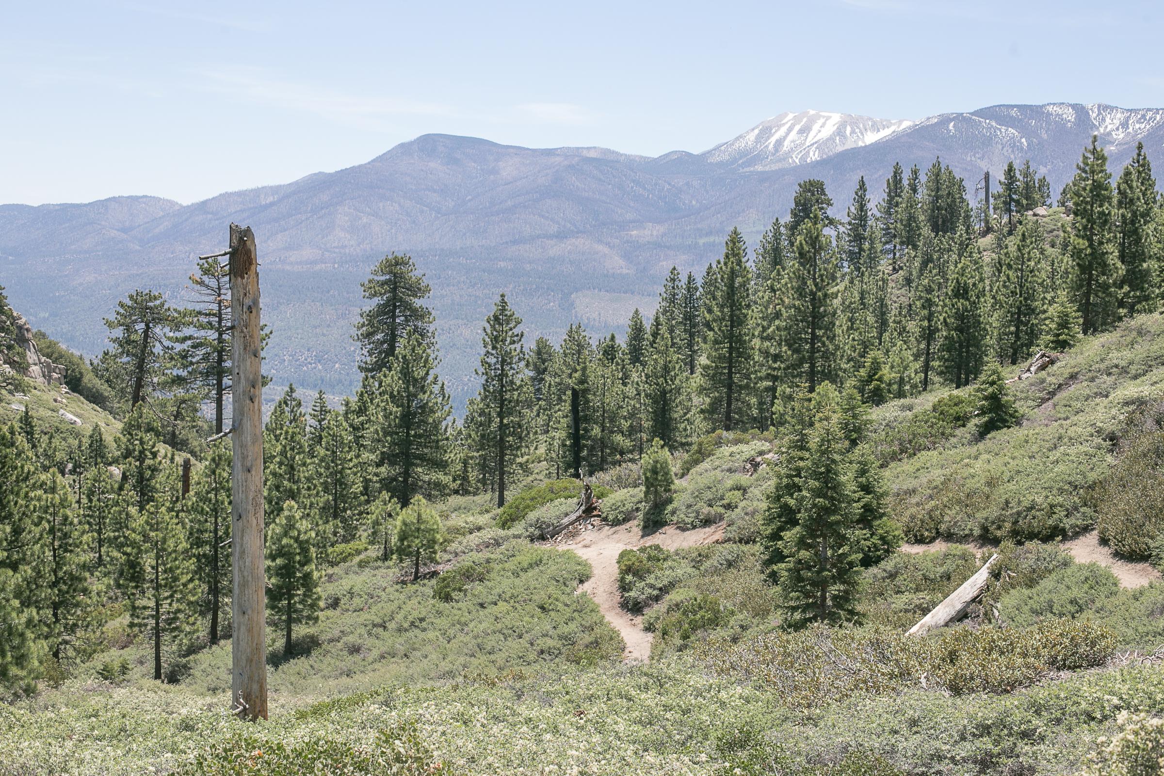 Big Bear_Lake_Camping_Trip_2017-3.jpg