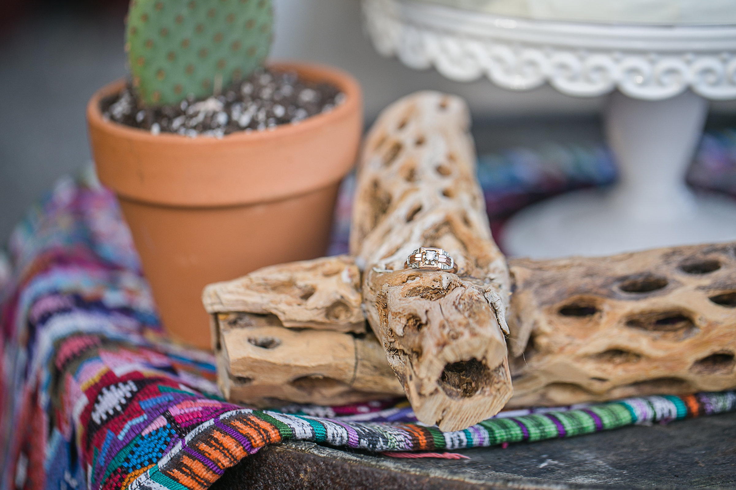 Mexican_Bridal_Shower_Barrels_&_Branches_2017-47.jpg