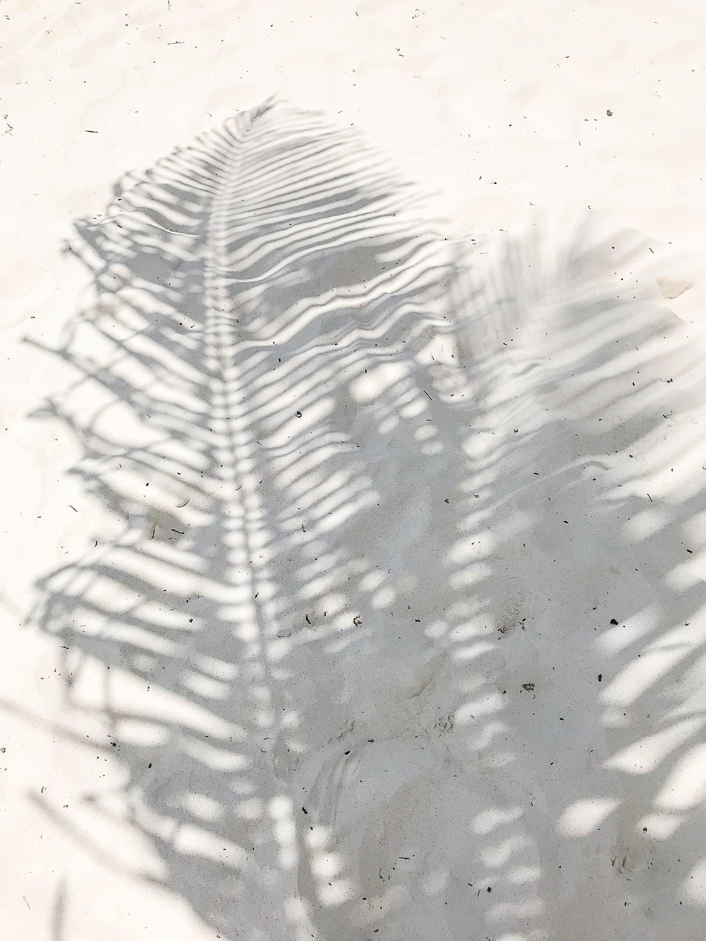 Tulum 2018-205.jpg