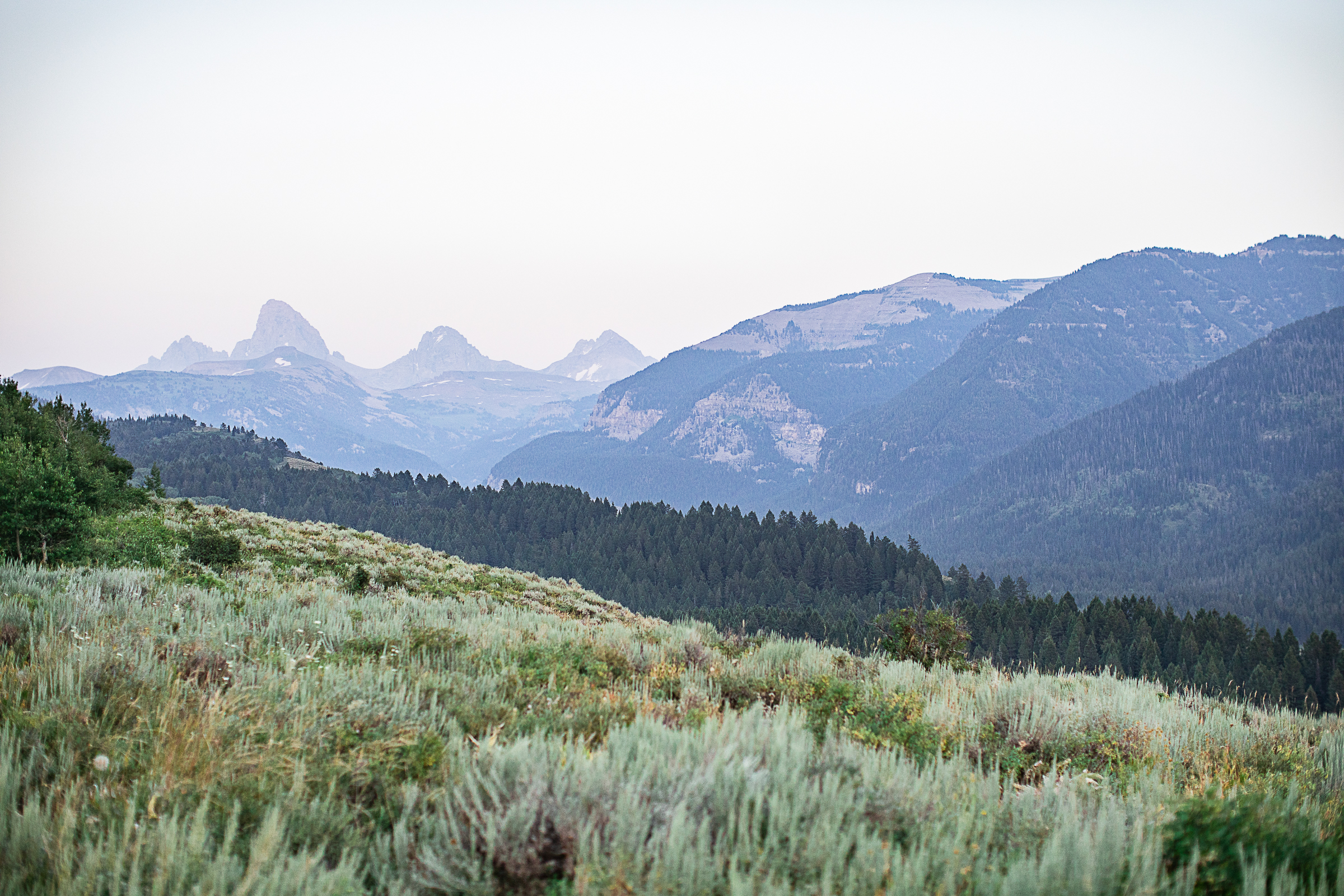 Pat and Shannon Grand Targhee Wyoming Wedding Grand Teton National Park-30.jpg