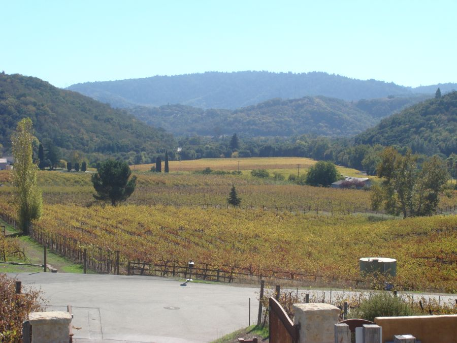 Aver-Family-and-Jason-Stevens-Vineyards2 (1).jpg