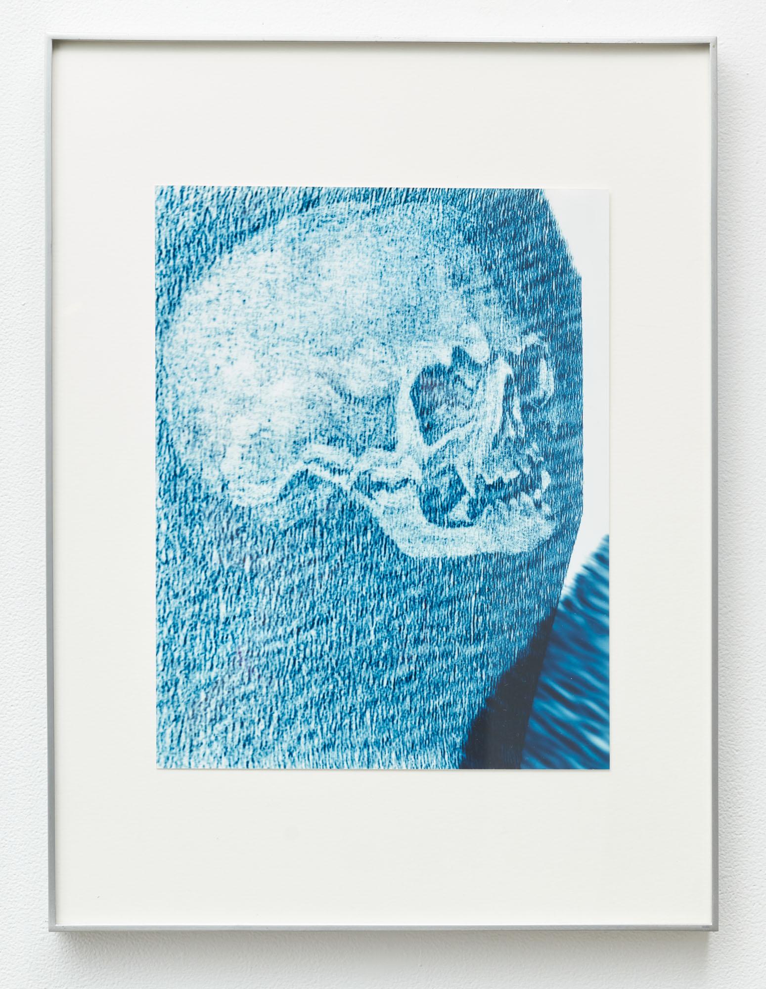Steve Pauley, Blue Ghost, 2014