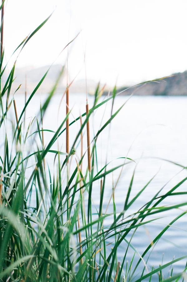 rachelblog_0008.jpg