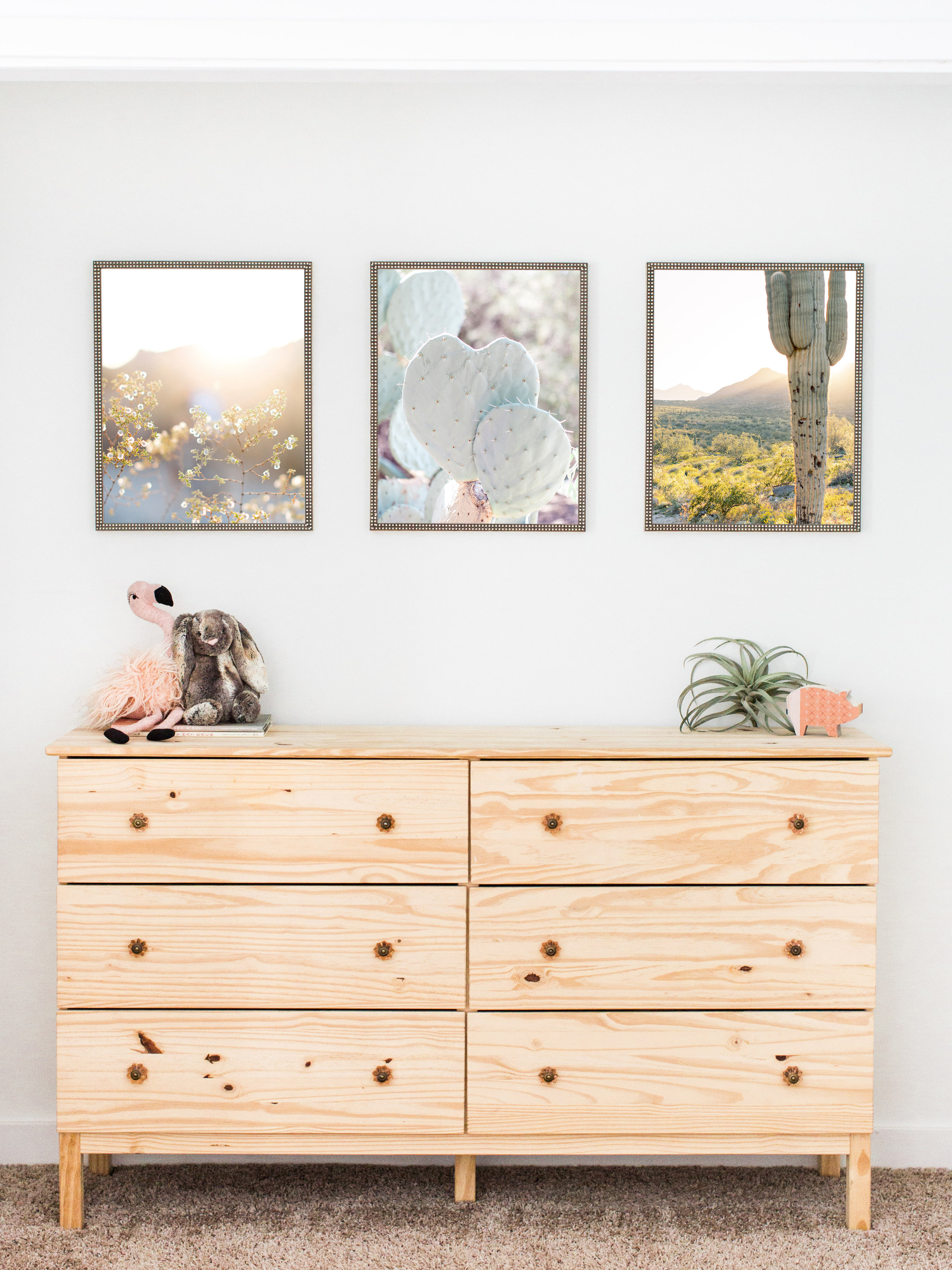$99 - 16x20 Prints (set of 3)