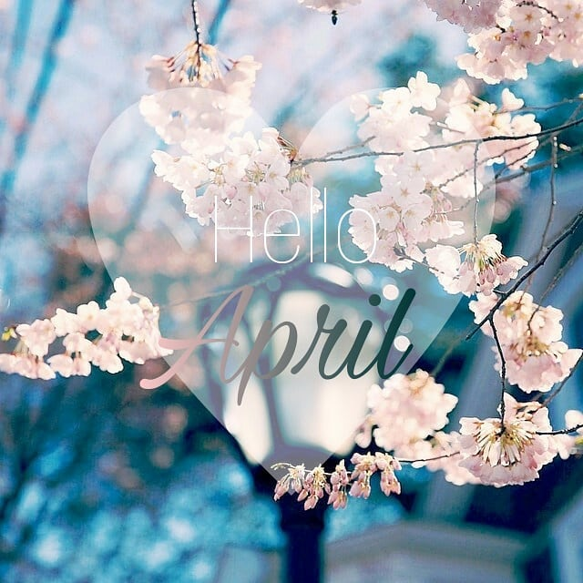 Hi April 🌸🌸🌸 This month is so sweet, it's a little wet but it brings such beauty. #april #spring #springtime #flowers