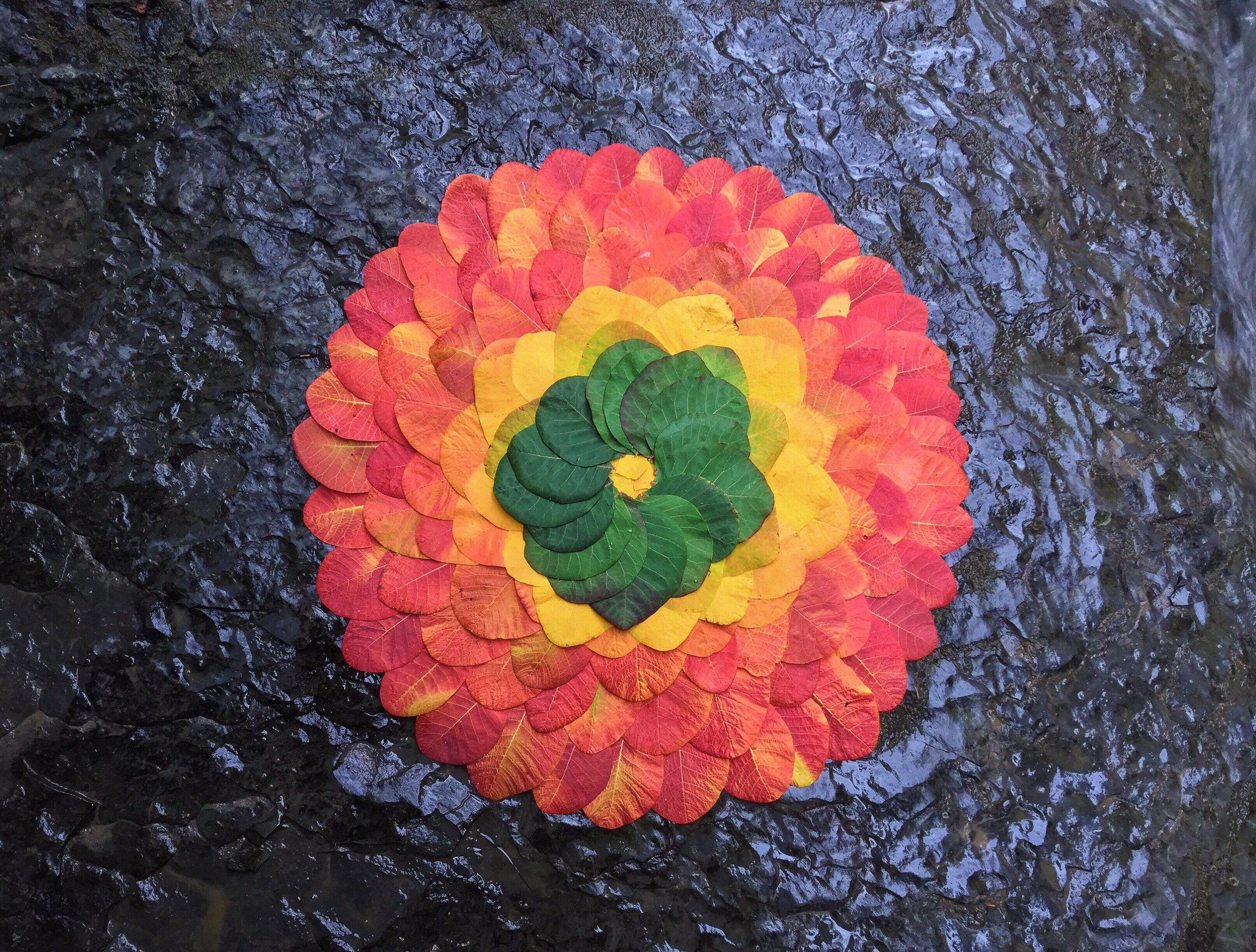 Leaf Mandala - $120 Unframed