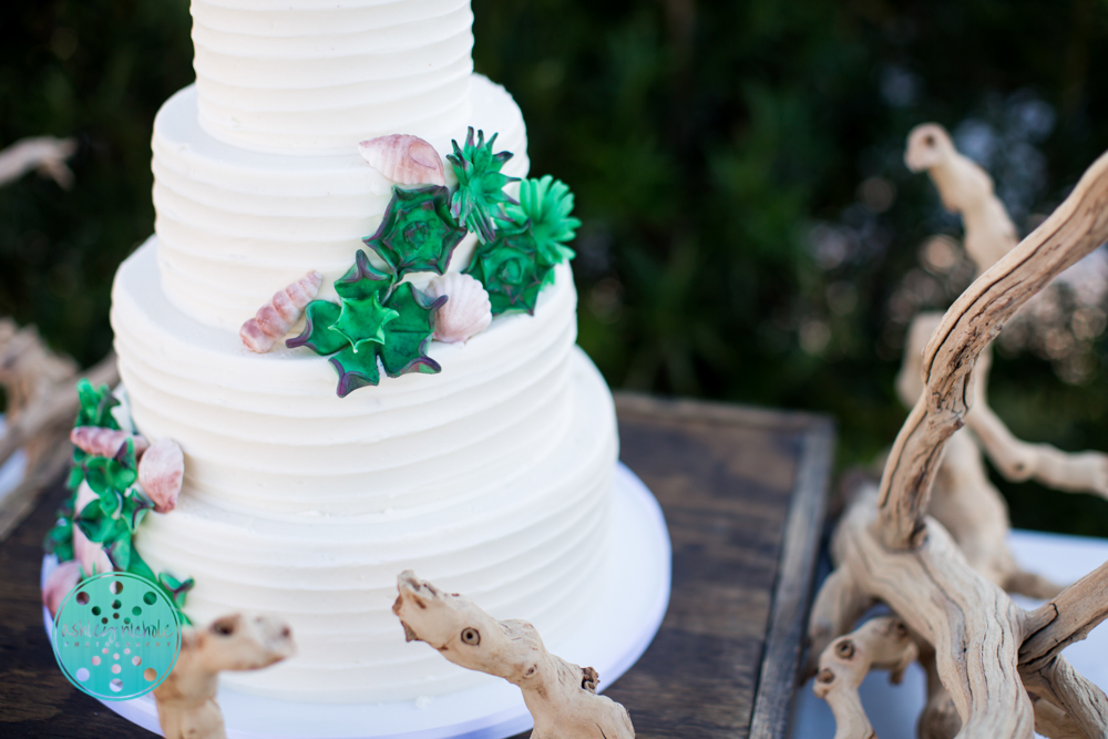 ©Ashley Nichole Photography- beach wedding- Alys Beach- 30A-3.jpg