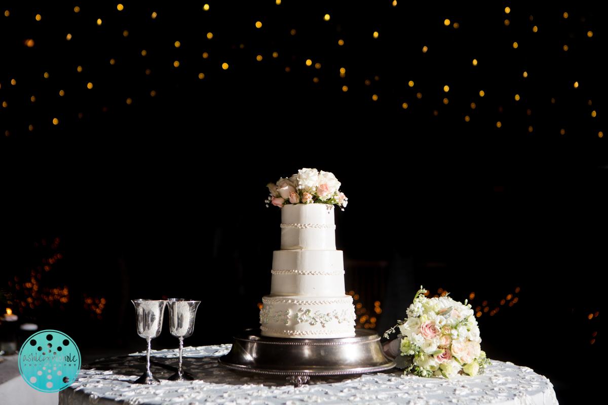 30A South Walton Wedding Santa Rosa Beach Wedding Photographer (C)Ashley Nichole Photography-441.jpg