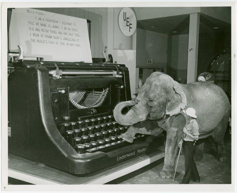 Typewriter&Elephant.jpg