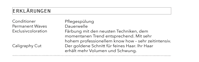 Singer_Preis15.png