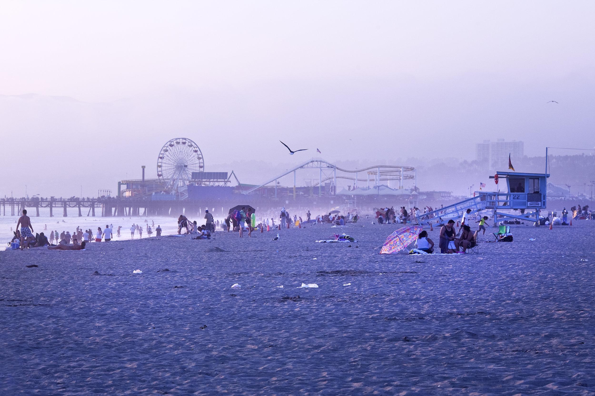Purple Beach RWX 30.jpg