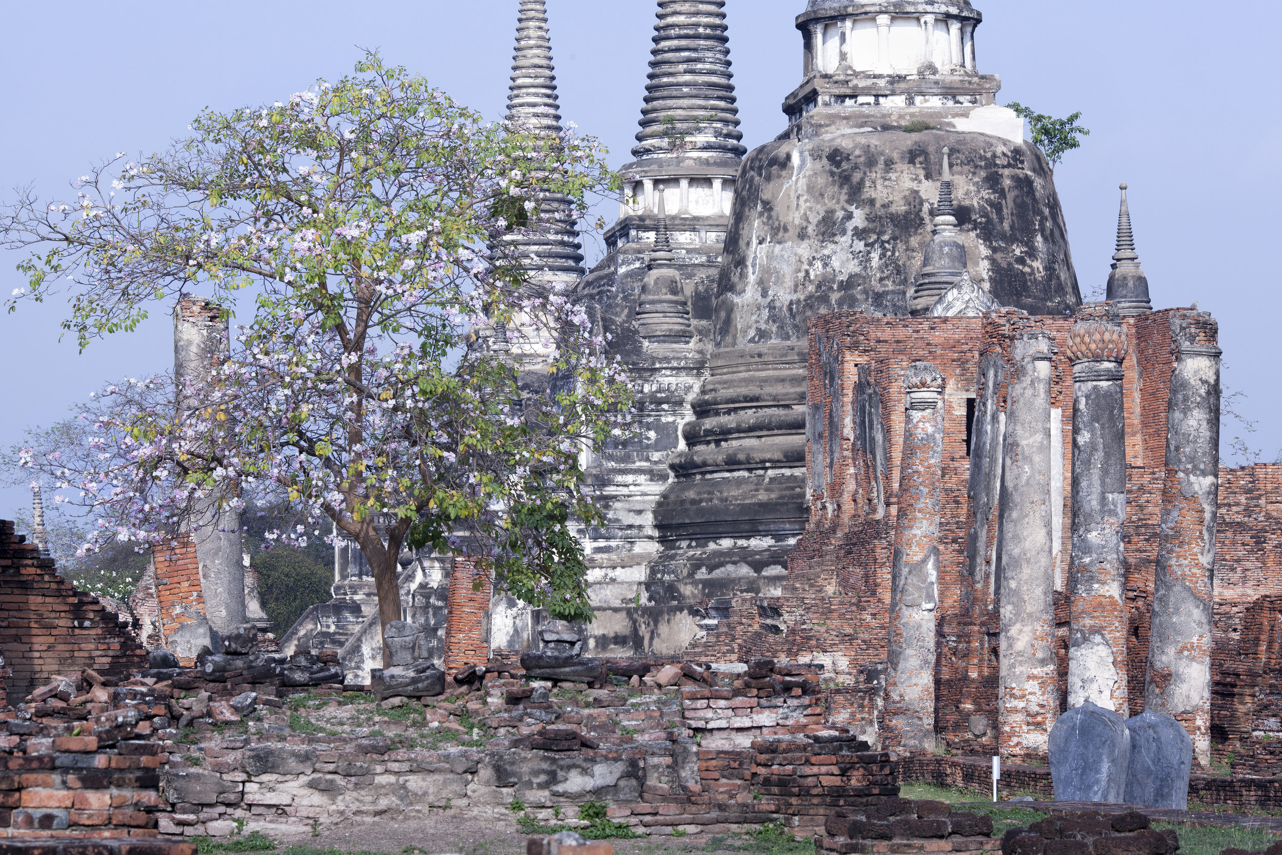 Ayutthaya 30 2.jpg
