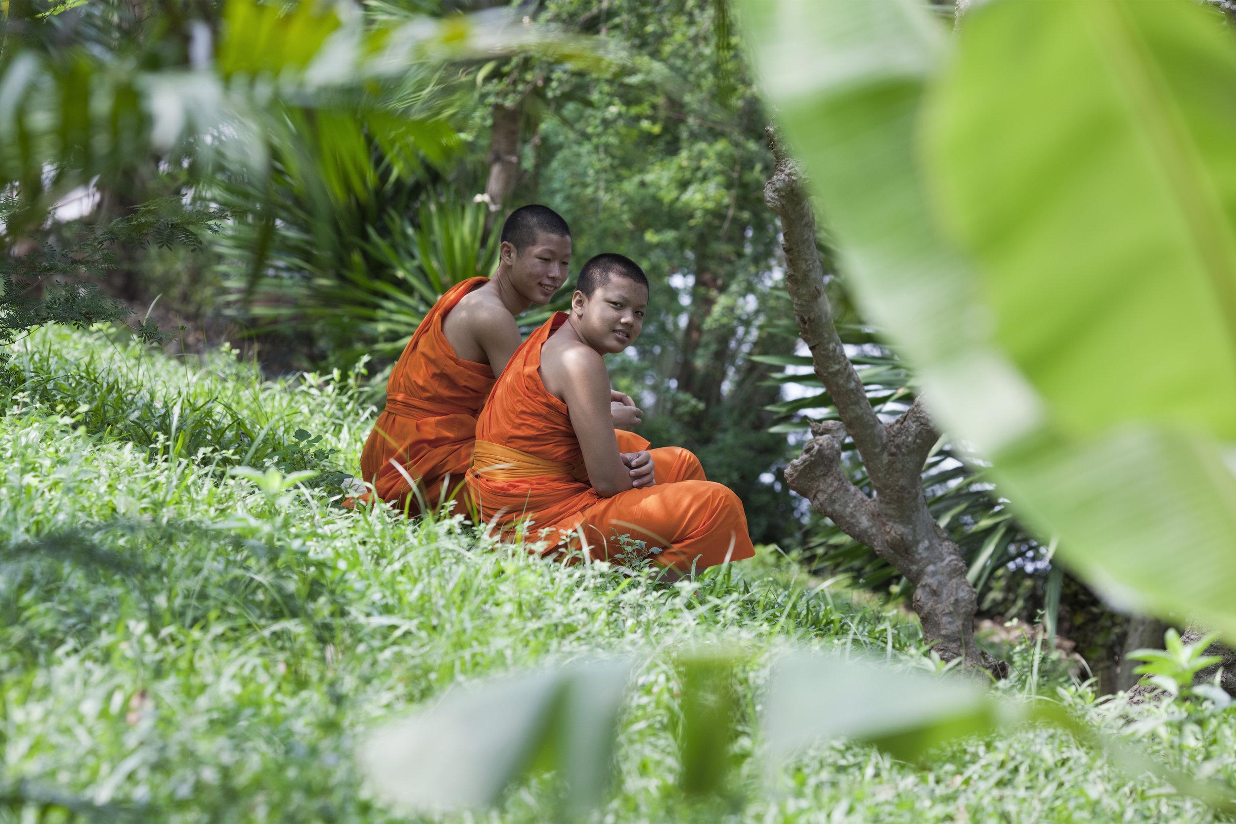 orange monks 30.jpg