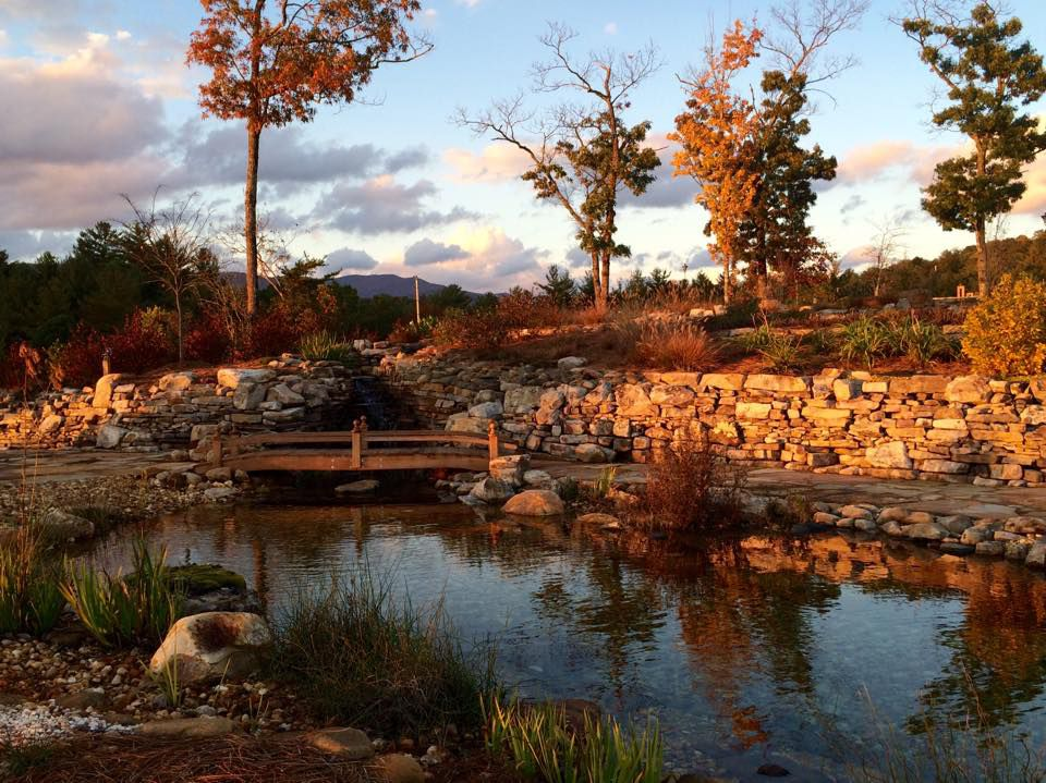 pond-fall.jpg