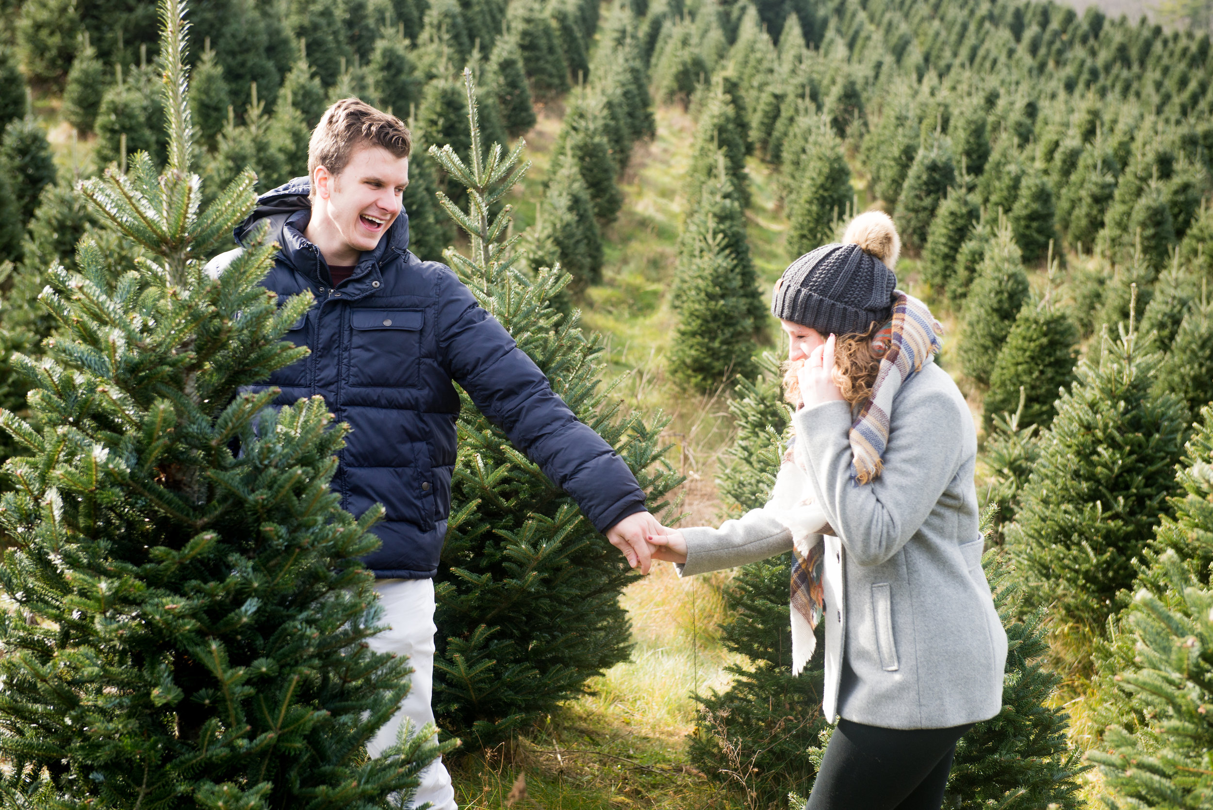 Christmas Tree Farm Mini Sessions are here! -