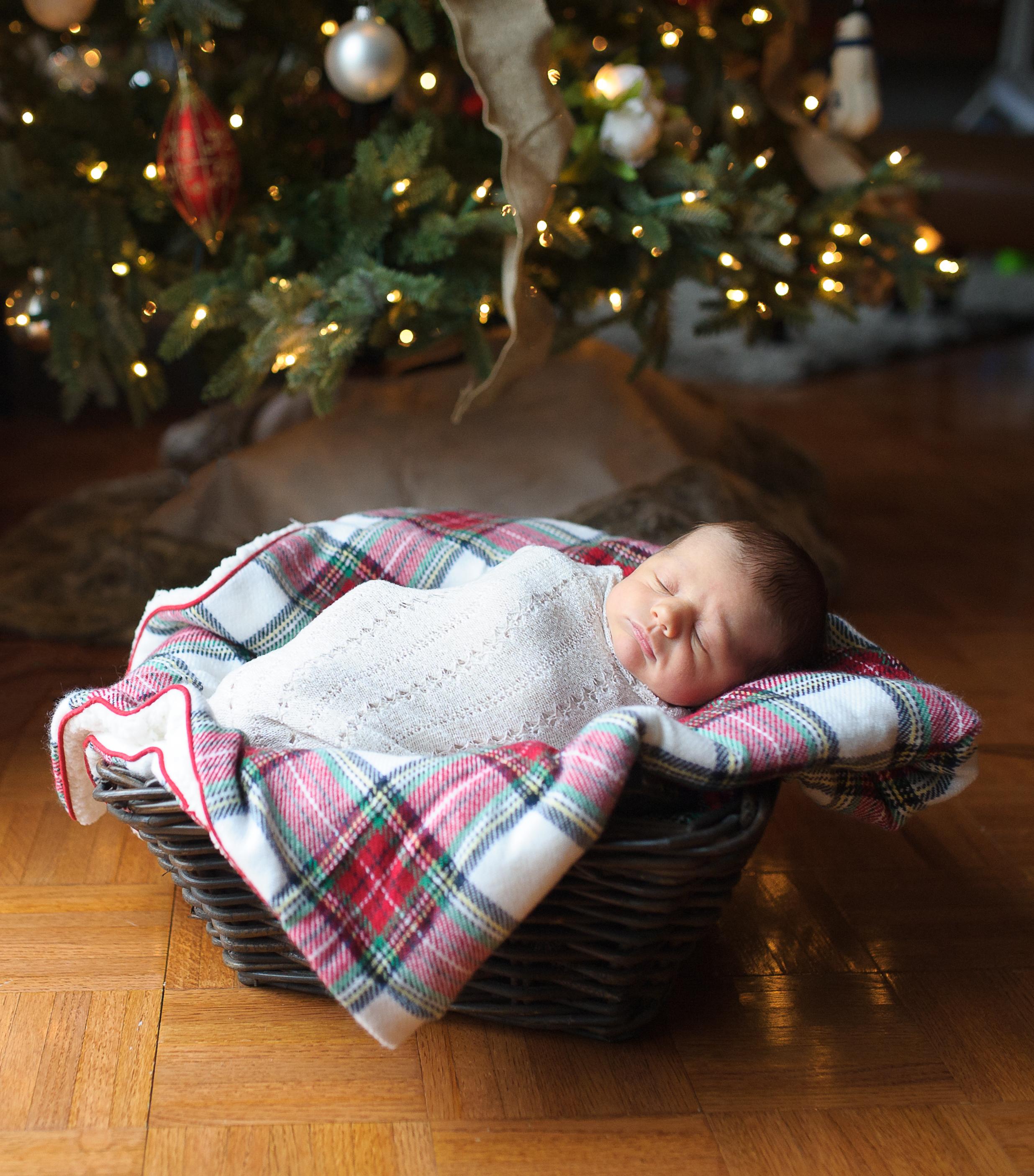 baby under christmas tree, christmas newborn session, nj newborn photographer