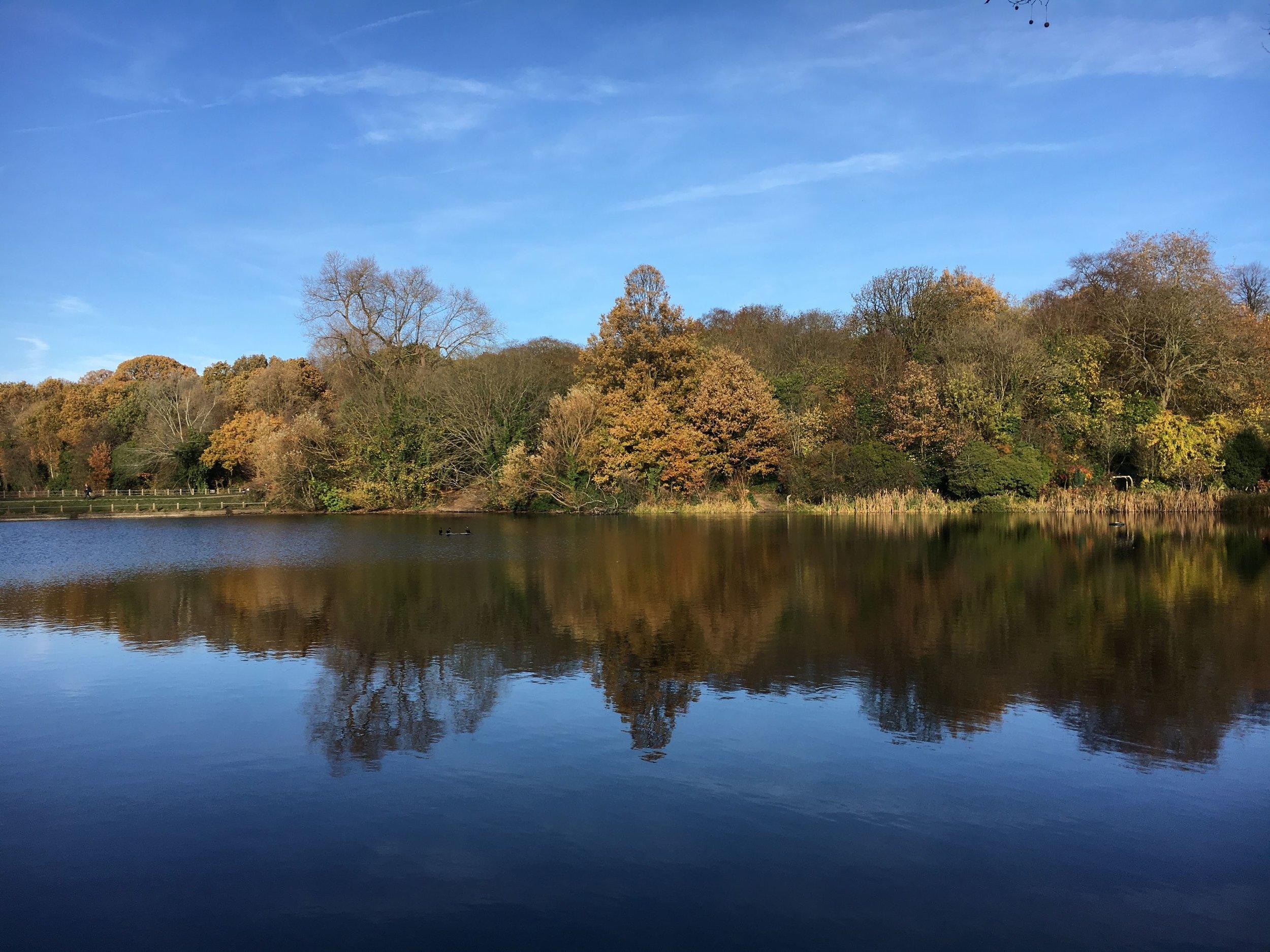 heath_lake.JPG