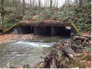 Triple box culvert in Chico Creek. Image Source: West Sound Watersheds Council